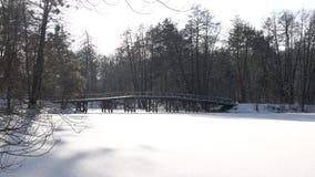 Parkera i vinter arkivfilmer