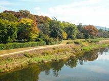 Parkera längs floden Arkivbild
