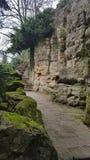 Parkera Luxembourg skogstenar Arkivfoto