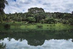 Parkera med en sjö Arkivfoton