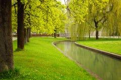 Parkera med floden på våren Royaltyfri Foto