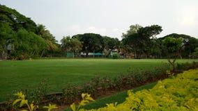 Parkera med grönt naturligt gräs för wonderfull fotografering för bildbyråer