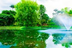 Parkera med sjön och den blåa springbrunnen arkivfoto