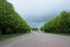 Parkera med träd i Tyskland, Adelsheim Fotografering för Bildbyråer
