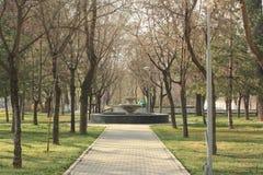 Parkera nära museet av Amir Temur Arkivfoton