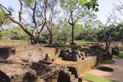 Parkera nära Sigiriyaen vaggar royaltyfria foton