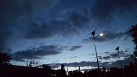 Parkera natten Royaltyfri Fotografi