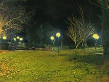 Parkera natten för gataljus Royaltyfri Foto