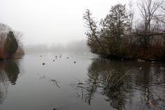 Parkera och sjön i Richmond Hill i Toronto i Kanada i morgonen i vintern Royaltyfria Bilder