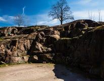 Parkera och stenar Arkivbild