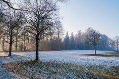 Parkera område med träd som är främsta av slottensamhet i Stuttgart in Royaltyfria Bilder