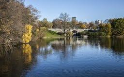 Parkera, Oslo, den soliga dagen och skinande vatten arkivfoto
