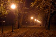 Parkera på natten. Arkivbild