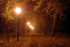 Parkera på natten. Fotografering för Bildbyråer
