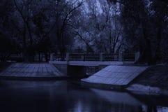 Parkera på natten Royaltyfria Bilder