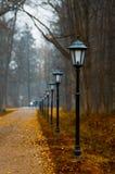 Parkera på Peterhof Royaltyfri Bild