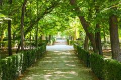 Parkera Parque de El Retiro, Madrid, Spanien fotografering för bildbyråer