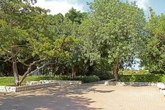 Parkera Ramat Hanadiv, minnes- trädgårdar av Baron Edmond de Rothschild Arkivfoto