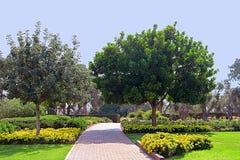 Parkera Ramat Hanadiv, minnes- trädgårdar av Baron Edmond de Rothschild, Zichron Yaakov, Israel fotografering för bildbyråer
