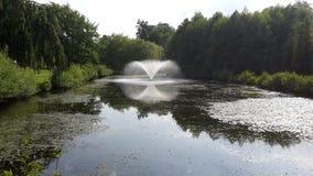 Parkera sjön royaltyfria bilder