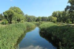 Parkera sjön, blå himmel, den gröna lakesiden, stillhet Arkivbild