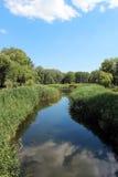 Parkera sjön, blå himmel, grön lakeside Royaltyfri Foto