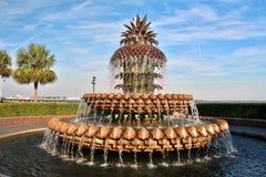 Parkera springbrunnen Royaltyfria Bilder
