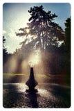 Parkera springbrunnen Royaltyfri Bild