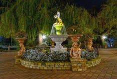 Parkera springbrunnen på natten Arkivbilder