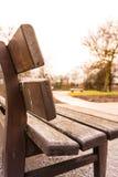 Parkera Sunny Day Empty Lonely Quiet för solljus för bänksolsignalljuset fred arkivbilder