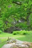 parkera swings Fotografering för Bildbyråer