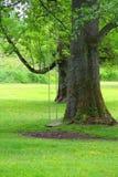 parkera swings Arkivbilder