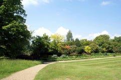 Parkera Trädgård bana Bana utomhus- sikt Royaltyfri Bild