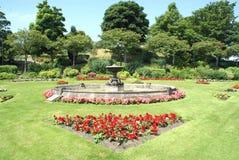 Parkera Trädgård utomhus- sikt Utomhus- plats fotografering för bildbyråer