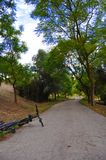 Parkera Väg Träd Landskap Höst sky screensaver som ska ringas screensaver till ditt skrivbord Härligt landskap i parkera char royaltyfri bild