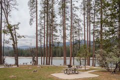 Parkera vid sjön Arkivbild