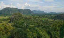Parkera Vinales - Kuba Arkivbilder
