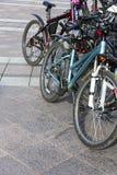 Parkerade cyklar Fotografering för Bildbyråer