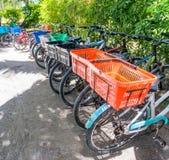 Parkerade cyklar i La Digue på den Anse källan D'Argent sätter på land Arkivbilder