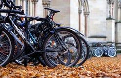 Parkerade cyklar och Autumn Leaves Royaltyfria Bilder