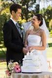 Parkerar den bitande bröllopstårtan för nygift personpar på royaltyfri bild