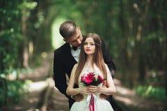Parkerar den charmiga brudgummen för lyckliga brölloppar och perfekta bruden som in poserar Arkivbild