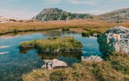 Parkerar den kalla sjön för det härliga berglandskapet i medborgaren Retezat Rumänien arkivfoton