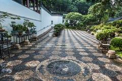 Parkerar den trädgårds- Kowloon Walled staden för bonsai Hong Kong arkivfoto