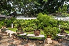 Parkerar den trädgårds- Kowloon Walled staden för bonsai Hong Kong arkivfoton