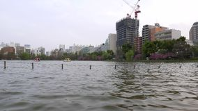 Parkerar i stadens centrum panorama för den Tokyo staden, sjön på Ueno lager videofilmer
