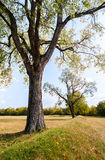 Parkerar nationellt historiskt för Hopewell kultur royaltyfri foto