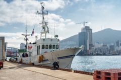 Parkerat vitt skepp på porten av Busan, Sydkorea fotografering för bildbyråer