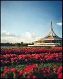 Parkeraträdgården royaltyfria bilder