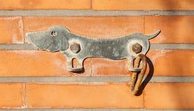 Parkeren voor de ring van het hondenmetaal met vormhond Royalty-vrije Stock Foto